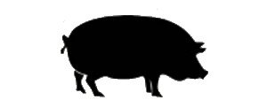 Hog-roast-bbq